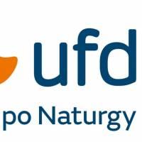 UFD de Naturgy