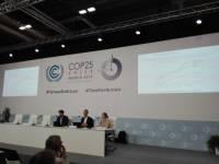 Presentación informe descarbonizacion.